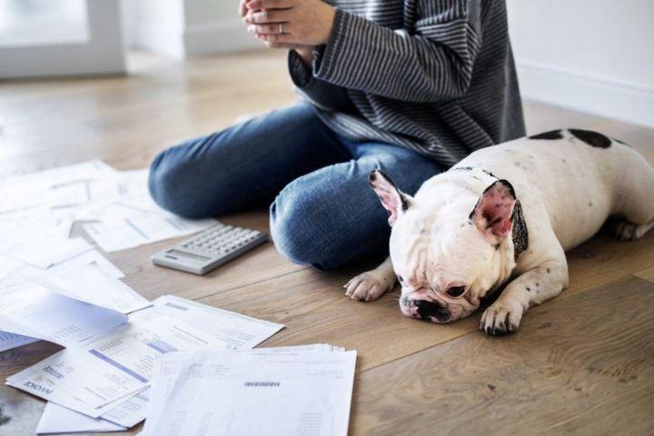 年収に問題ないはずなのに住宅ローンが落ちた。なぜかを知るために読むコラム